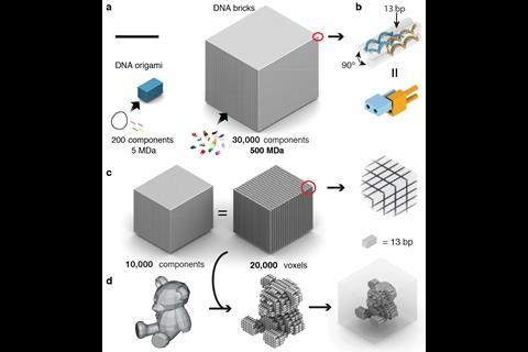 Three-dimensional nanostructures self-assembled from DNA bricks